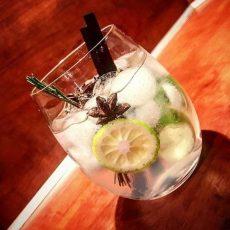 gin tonic rubens oostduinkerke